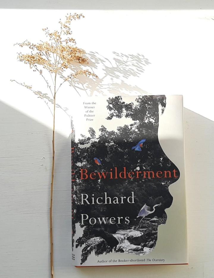 Bewilderment by RichardPowers